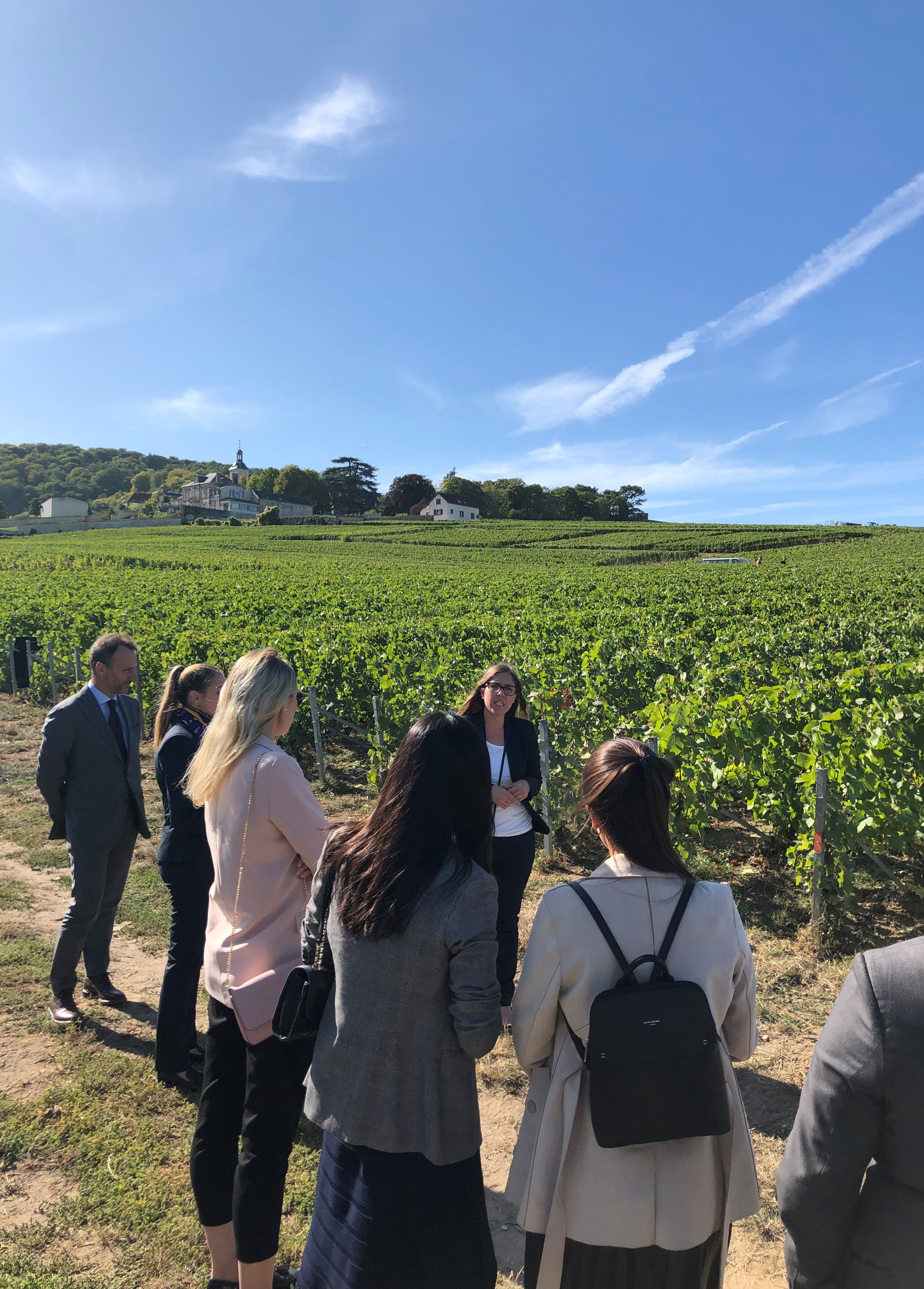 Students visiting the Veuve Clicquot vineyards