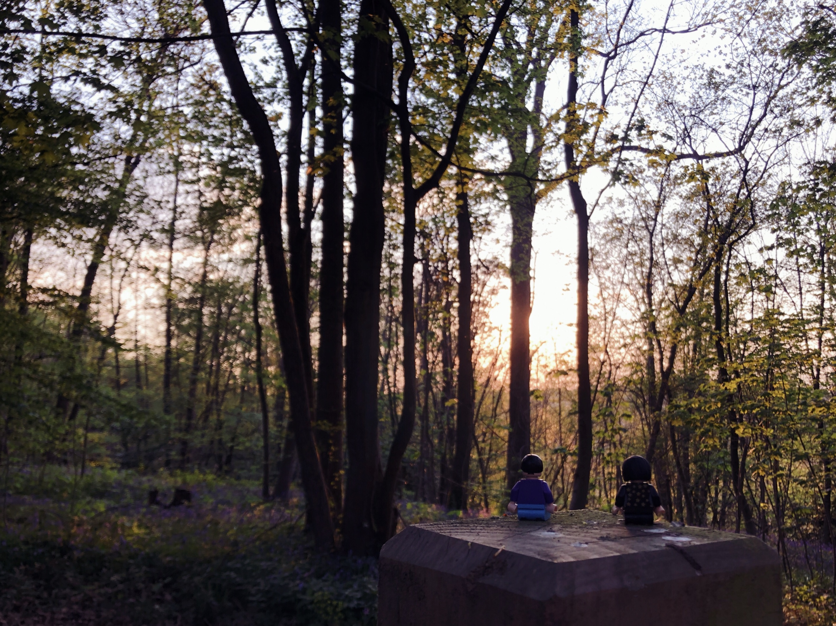 The same lego couple sat on a wooden pedestal, looking onto the background of the woods during sunset. The dulled sun filters through the trees.