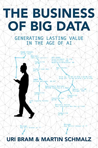 Book Cover of 'The Business of Big Data'